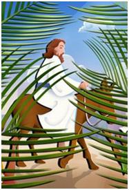 Year C – Palm Sunday